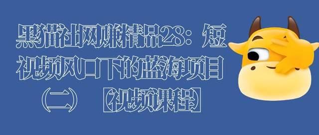 黑猫社网赚精品28:短视频风口下的蓝海项目(二)【视频课程】