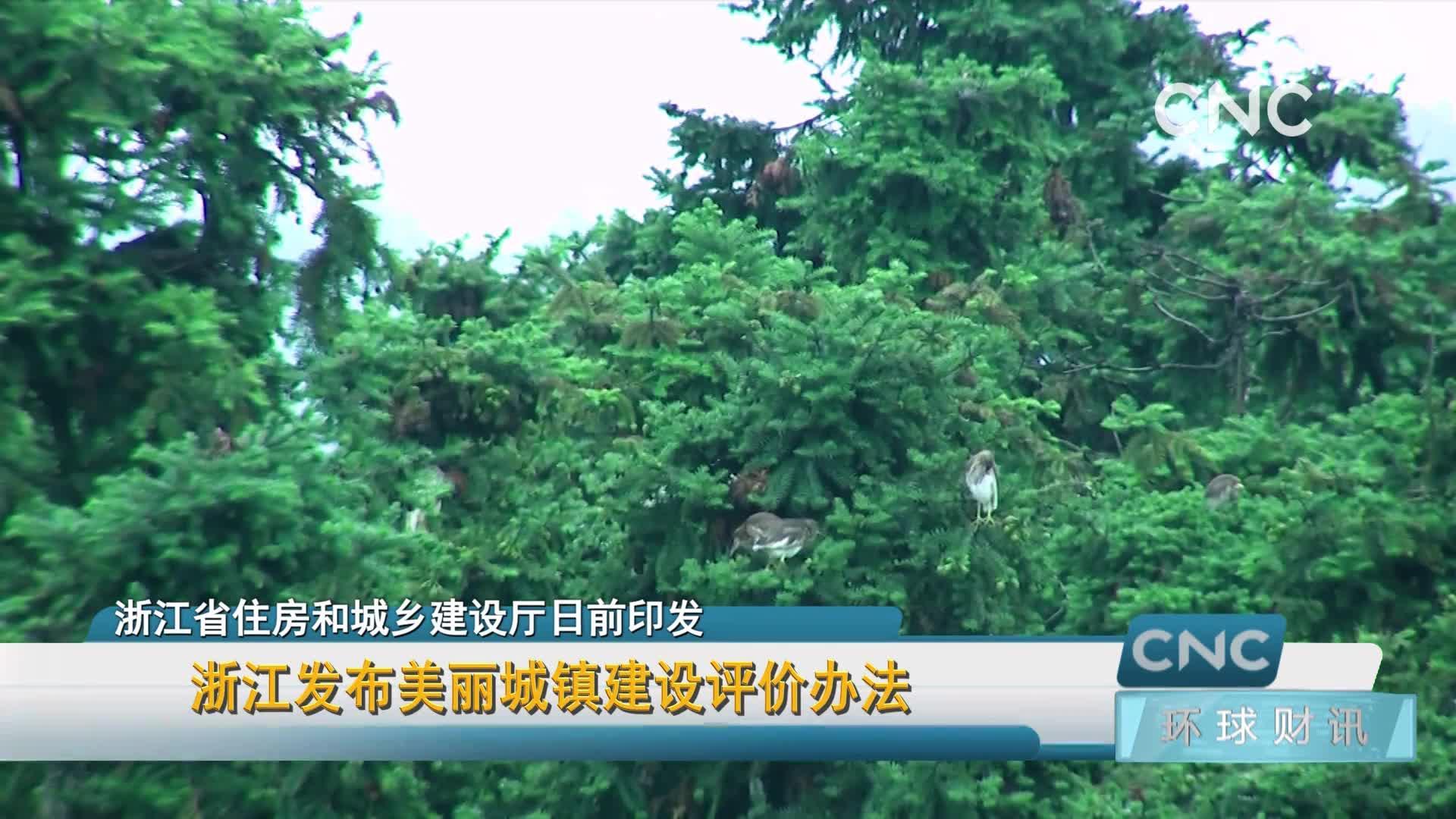 浙江发布美丽城镇建设评价办法安卓版