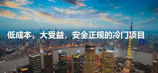 晓林冷门赚钱36招第5招低成本,大收益,安全正规的冷门项目【视频课程】