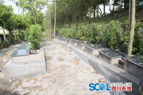 """四川广安有哪些古墓,广安免费生态墓遇冷送不出 传统""""厚葬""""观念难撼动"""