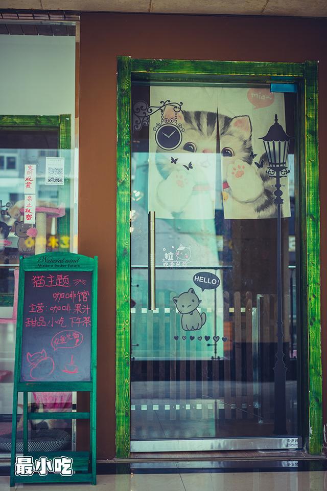 猫控们,喵星人来袭啦!平顶山首家猫咪咖啡馆插图21