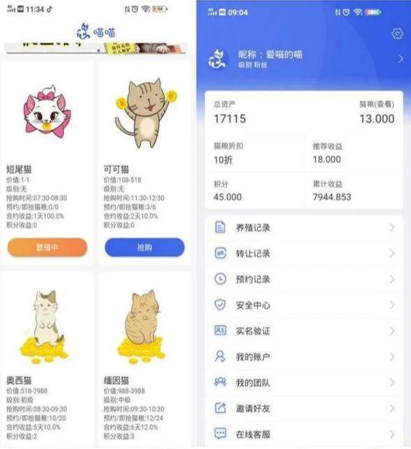 """揭秘:号称零撸的""""养猫赚钱""""骗局套路插图1"""