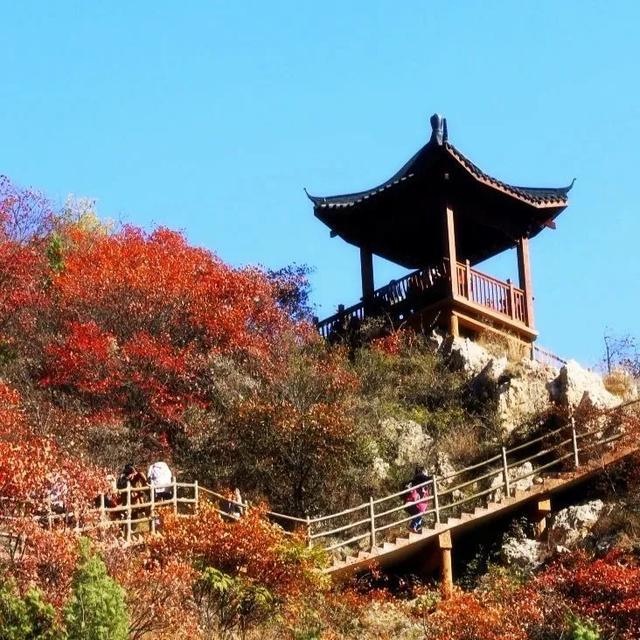 禹州大鸿寨第十三届红叶节将在10月18日盛大开幕!