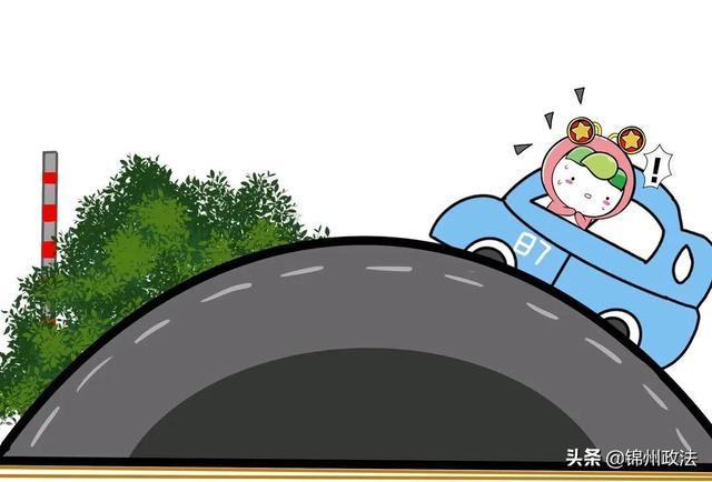 学驾照有多难?你绝对想不到!插图(11)