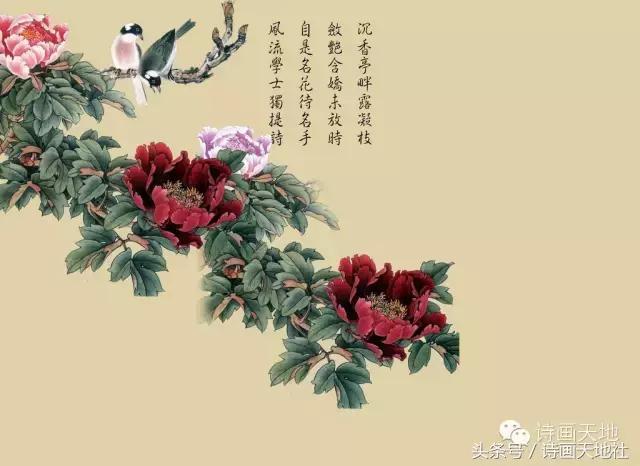 诗体,诗体概说:从汉魏六朝和唐宋说起
