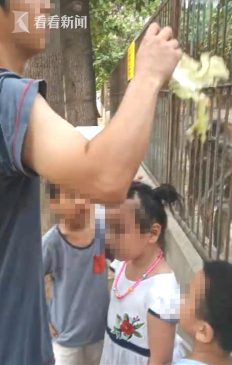 男子无视标识带孩子投喂动物 面对劝阻仍一意孤行:用不着你管
