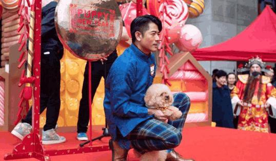 郭富城身高再次遭質疑,香港鞋王殘忍爆料郭天王的增高墊有多高