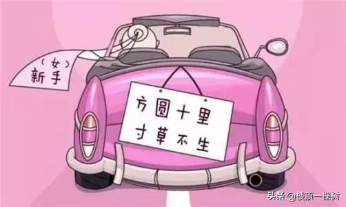 女司机,资质平平,40天拿到C1驾照的心路历程插图