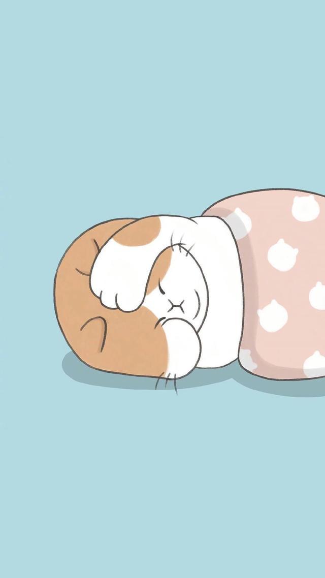 动漫壁纸猫,【卡通猫咪壁纸】储存阳光,必有远芳。心中有暖,又何惧人生荒凉