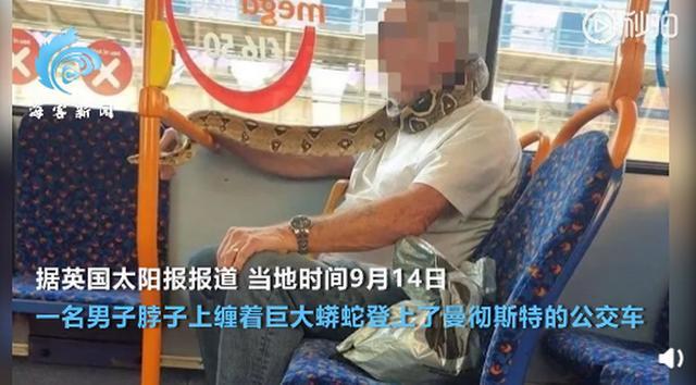 英国男子身缠蟒蛇搭乘公交车,蟒蛇遮住其脖子和嘴 网友:自制蛇皮口罩?-第1张