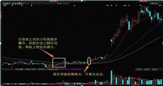 """股票能限价买入吗,一旦符合""""蚂蚁上树""""形态,果断抄底,这就是短期暴涨的信号"""