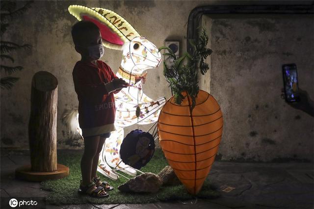 马来西亚庆祝中秋 街头装饰一新巨型兔子灯吸睛-第2张