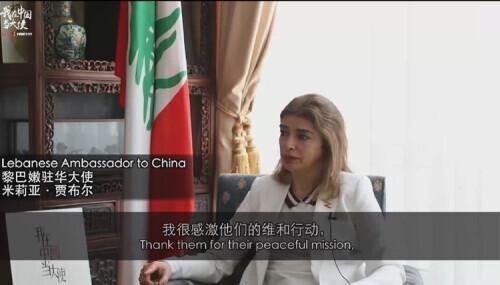 多国驻华大使送祝福:中国发展是世界机遇-第6张