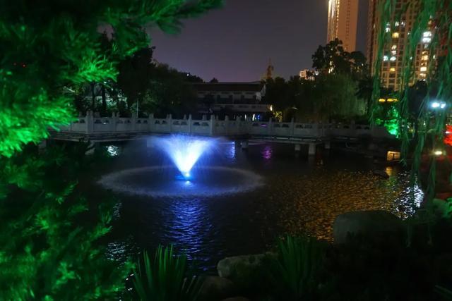 「游园夜景醉游人」晚上8点以后的工人文化宫,美爆了插图24