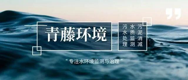 奥门金莎娱乐官方网站app