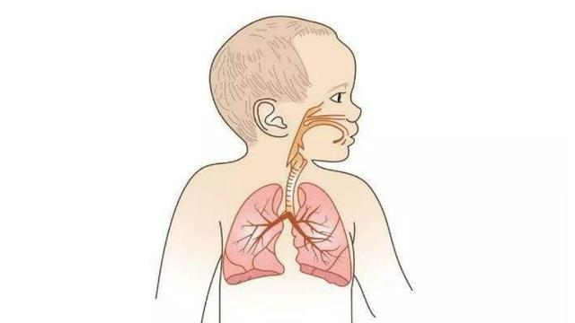 家有健康总裁李颖:助孩子健康成长,为孩子保驾护航