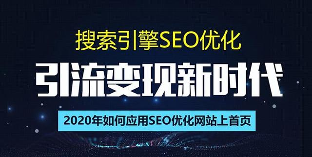 SEO搜索引擎优化总监实战VIP课堂【透析2020最新案例】快速实现年新30w(第9期)