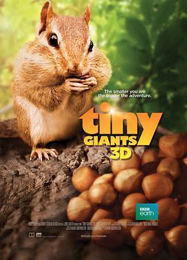 小巨人 3D 电影海报