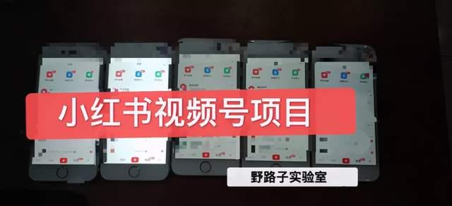 野路子小红书视频号1.0项目,直接上手操作就能赚钱的视频号项目