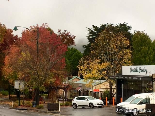 超过墨尔本和悉尼:阿德莱德成为澳洲最宜居城市