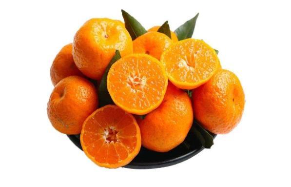 想要砂糖桔膨果增甜着色,跟永春碳基肥一起用心栽培