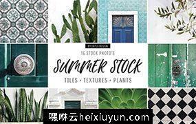 炎炎夏日植物主题场景样机 Summer stock, texture, tiles, plants #1252089