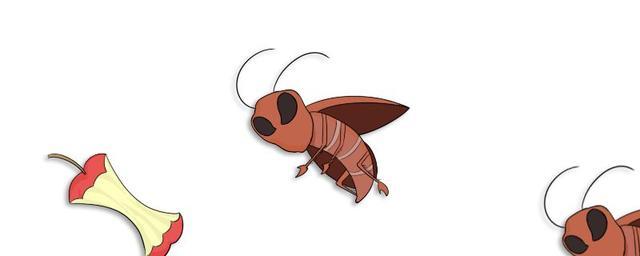 房子里有蟑螂怎么根除 这些方法了解一下
