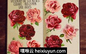 Pink -amp; Red Rose Clipart Flowers