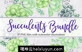 水彩多肉植物无土栽培植物剪贴画PNG免扣素材 Succulents Bundle