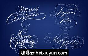 Merry Christmas -amp; Happy Holidays