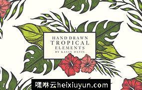 一套热带夏威夷丛林植物手绘矢量素材合集包 Hand Drawn Tropical Vector Elements