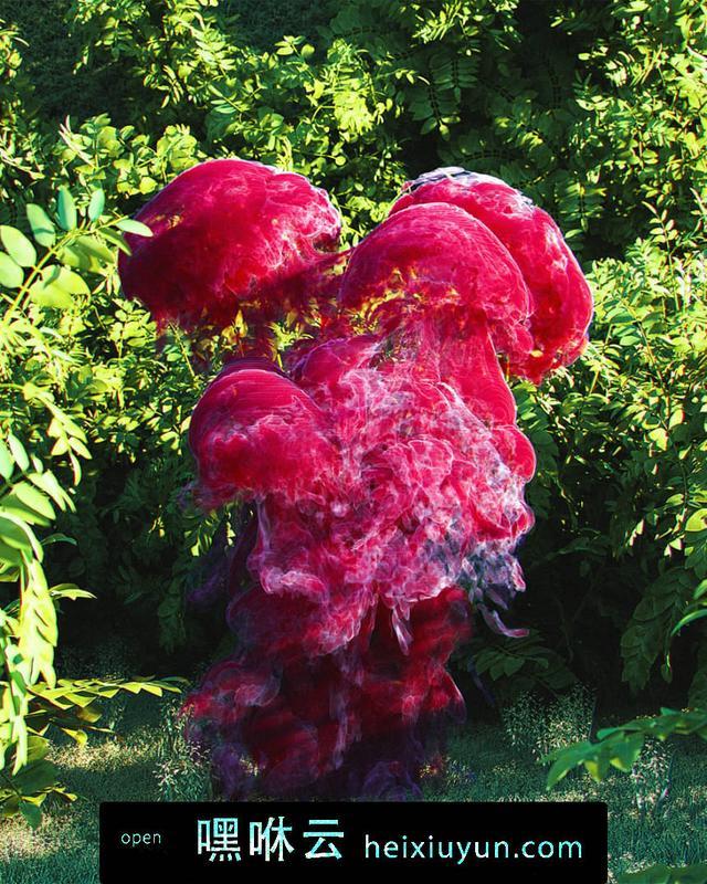 嘿咻云-[09-10-17] - Fungus巨大的红色真菌C4D动画工程文件分享