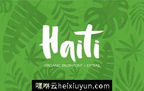 粗狂手绘笔刷字体 Haiti Organic Brush Font  #742210
