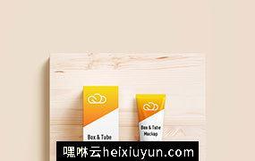 化妆品护肤品洗面奶美容产品包装贴图展示样机PSD模板 Tube & box mockup