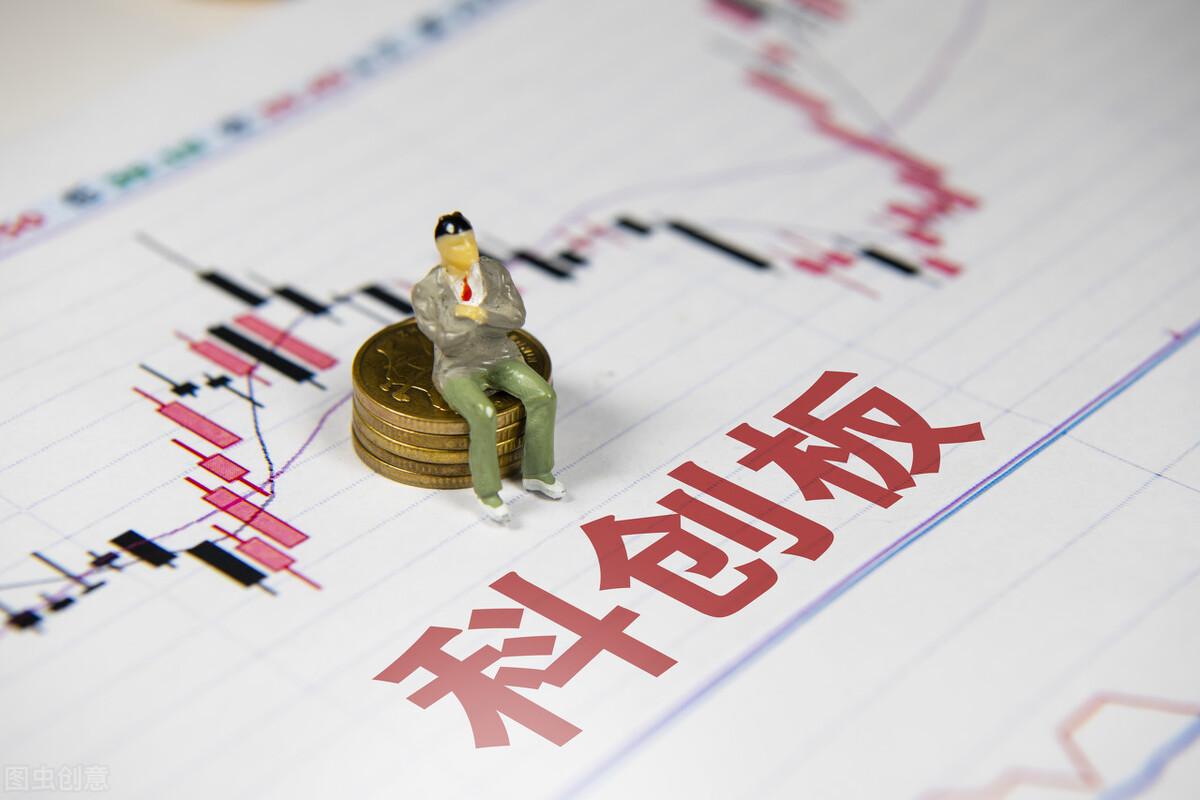 """钮文新:切除""""新股不败""""毒瘤是中国股市成熟的重要标志"""