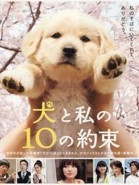 狗狗与我的十个约定()