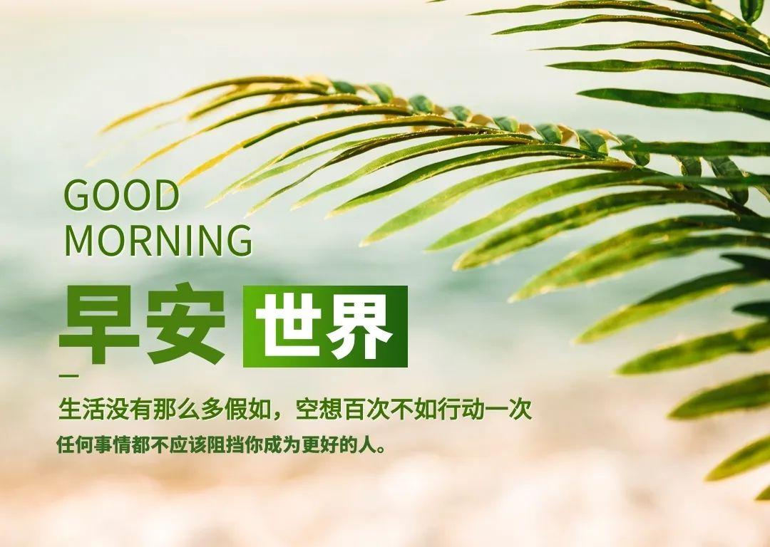 新一周早上好祝福语正能量带图片:努力向前,定能遇见更好的自己