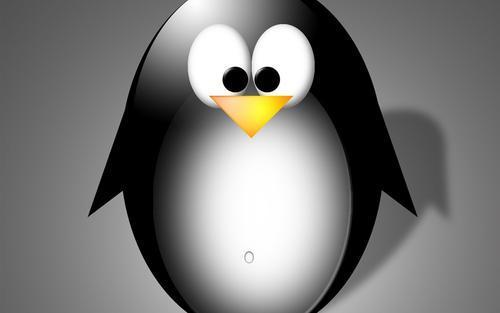 Linux系统nm命令详解