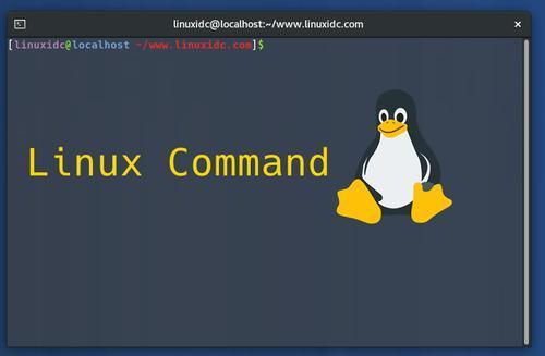 Linux系统which命令详解