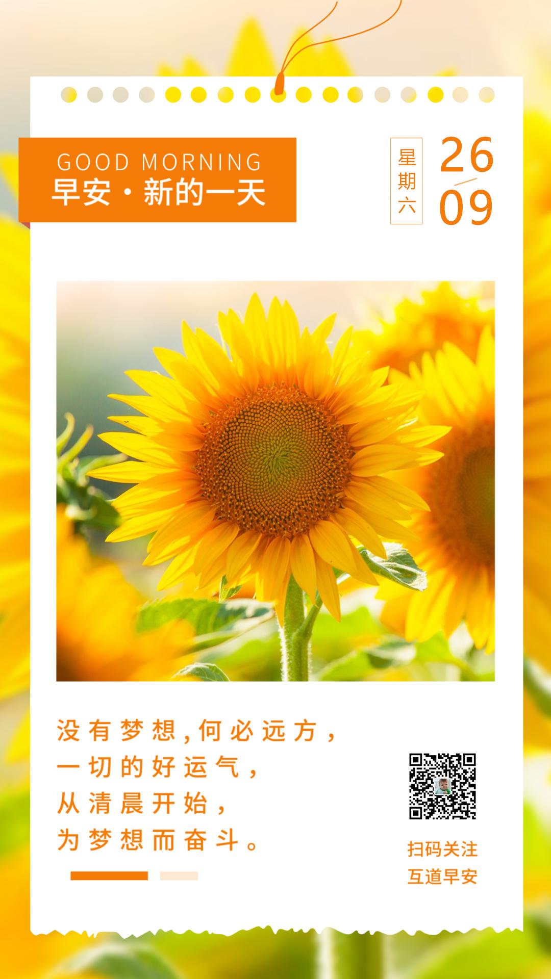 周末正能量阳光早安图片句子