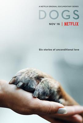 爱犬情深 第一季海报