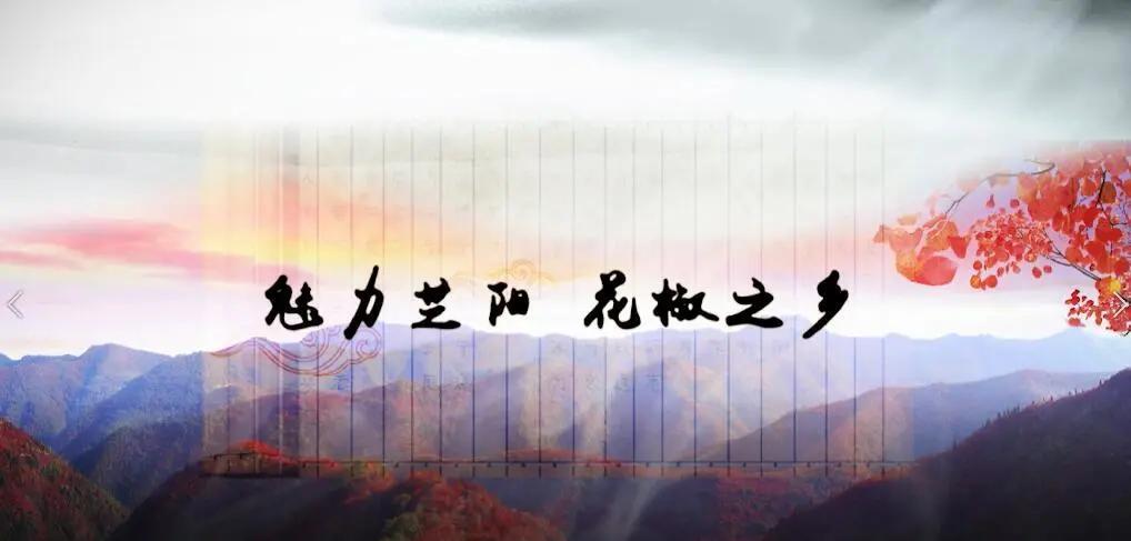 【第十届县域会】专题研讨会五