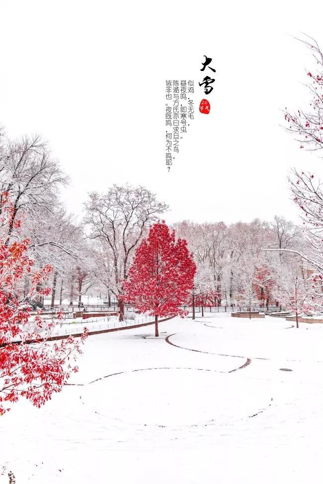 大雪节气问候语简短带祝福图片