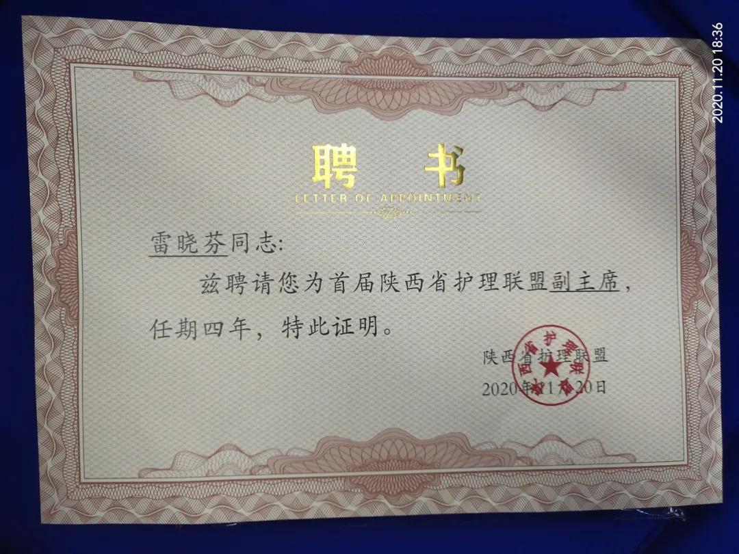 副主席单位!副主席!西安大兴护理再获殊荣!